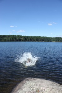 Boundary Waters Swimming