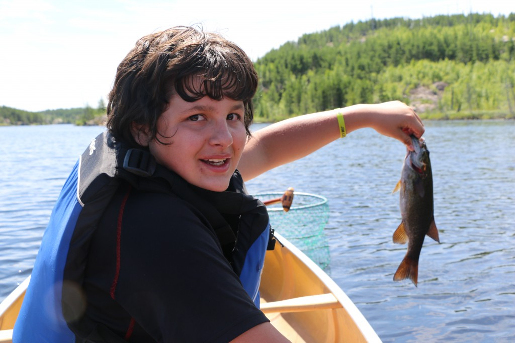 Catch and Release in the BWCA
