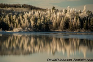 david-johnson-frost-lit-up-by-sunrise