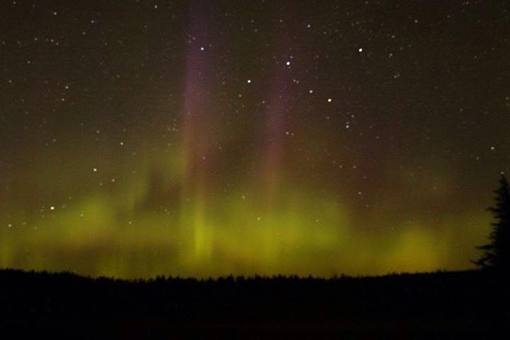 BWCA Northern Lights