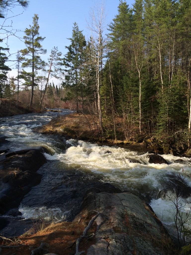 Gunflint Trail Beauty
