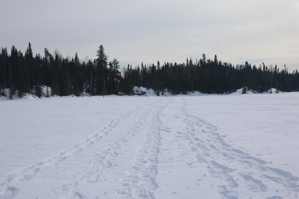 Tracks in the BWCA
