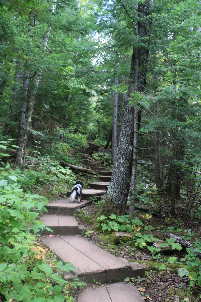 Hiking on the Gunflint Trail