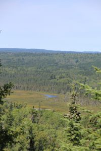 Hiking trails on the Gunflint Trail