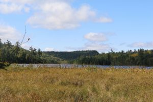 Hiking Gunflint Trail