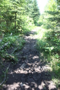 Boundary Waters portage path