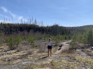 Gunflint Trail hiking