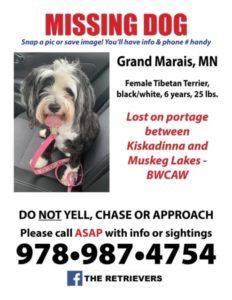 BWCA lost dog found
